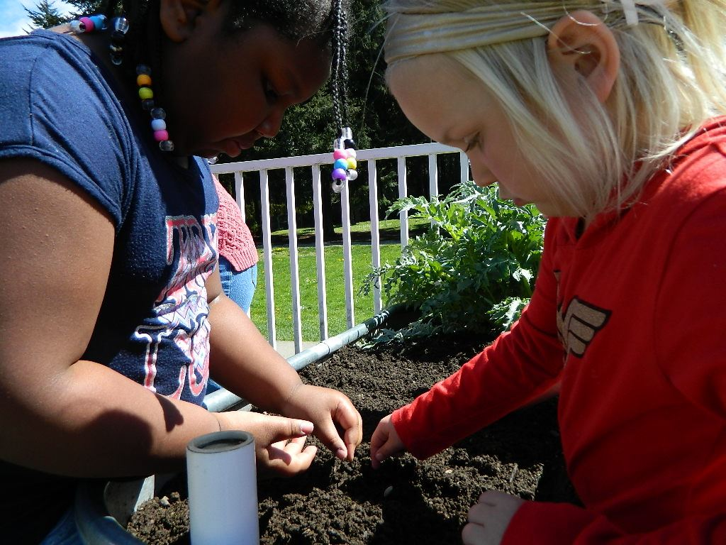 Cherrydale girls sowing seeds