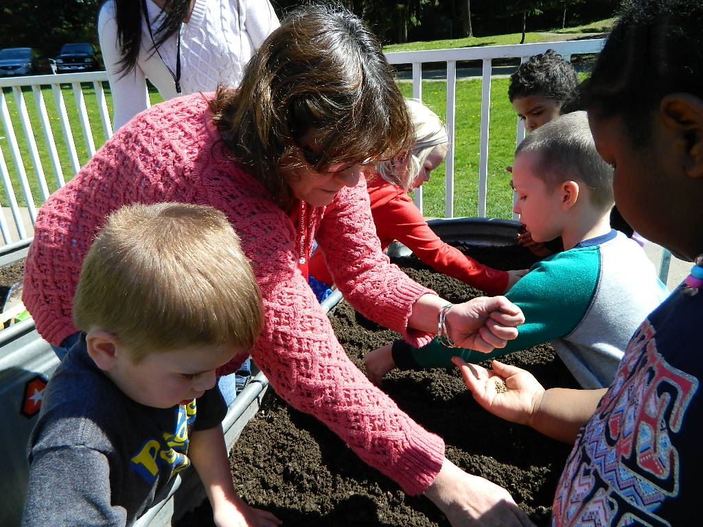 Cherrydale kids sowing bed 1